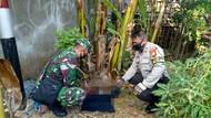Mayat Bayi Baru Lahir Ditemukan di Bawah Pohon Pisang di Cengkareng