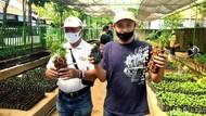 Meski Pandemi, Permintaan Bibit ke DKPP Surabaya Meningkat Saat Pandemi