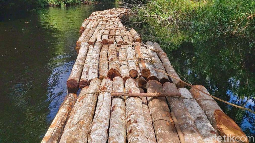 Potret Ratusan Batang Kayu Hasil Illegal Logging di Riau