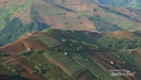 Indahnya Panorama Terasering Panyeweuyan Argapura