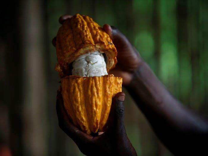 Yuk, Intip 10 Fakta Unik Cokelat yang Ada di Dunia!