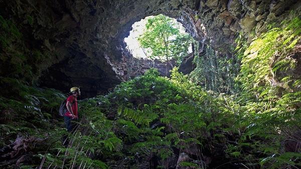 Dak Nong Global Geopark UNESCO (Vietnam) memiliki kawah yang spektakuler, air terjun megah dan sistem ratusan gunung berapi yang menakjubkan di Asia Tenggara. (UNESCO)