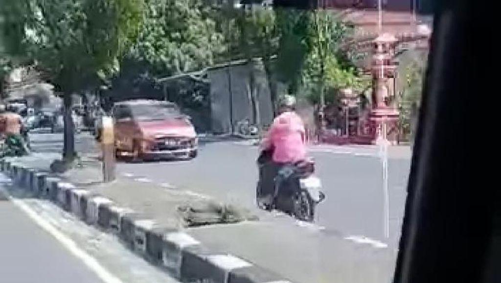 Viral di Klaten! Video Emak-emak Pemotor Santuy Banget Lawan Arus