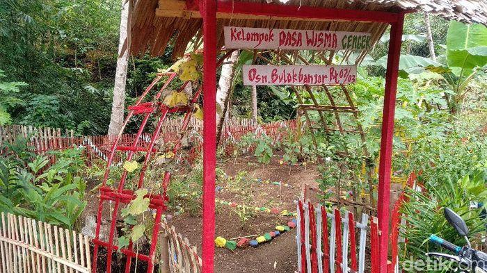 Taman Bunga Pangandaran