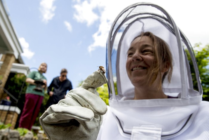 Beekeepers Sean Kennedy, right, and Erin Gleeson, left, pack up a bee box full of honeybees they removed from a fence line in a neighborhood in Anacostia, Monday, April 20, 2020, in Washington. Over the last year, beekeepers in the U.S. lost 43.7% of their honeybee colonies, according to the Bee Informed Partnership. (AP Photo/Andrew Harnik)