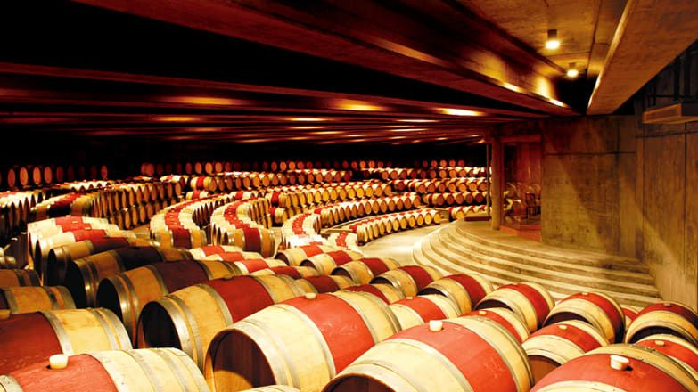 Kebun anggur atau vineyard terbaik 2020