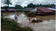 Cerita Tim SAR Evakuasi Anak Terpisah dari Ortu Saat Banjir Luwu Utara