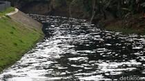 Sungai Buaran Jakarta Timur Berbusa