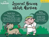 Lagi Cari Hewan untuk Qurban? Perhatikan Syarat-syarat Ini