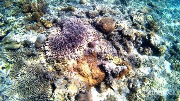 Gili Kondo Lombok Timur