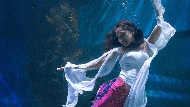 Mermaid di Jakarta Aquarium.