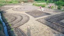Cuma di Klaten Ada Kebun Sayur Bermotif Batik