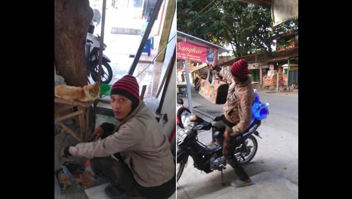 Orang baik di Tegal merawat kucing-kucing jalanan