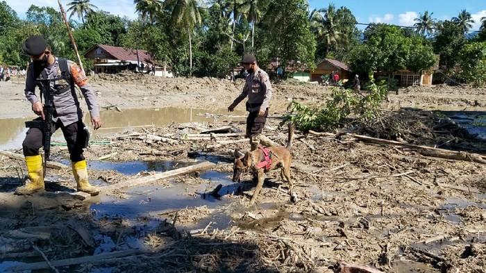 Polisi menerjunkan anjing pelacak untuk membantu pencarian korban banjir bandang di Luwu Utara, Sulsel.