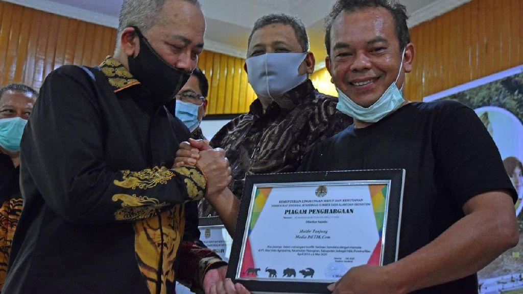 Jurnalis detikcom Terima Award KLHK Atas Pemberitaan Penanganan Konflik Harimau Sumatera