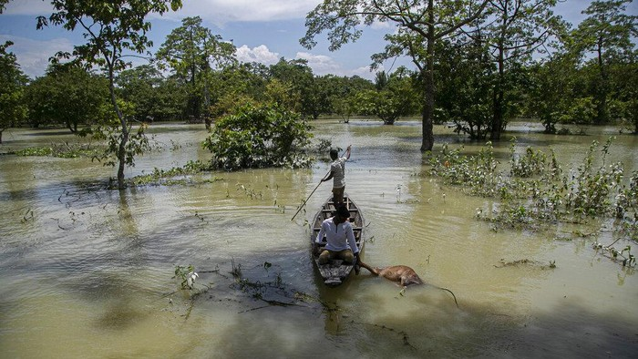 Indian flood affected people ride on boats near their partially submerged houses along river Brahmaputra in Morigaon district, Assam, India, Thursday, July 16, 2020. Floods and landslides triggered by heavy monsoon rains have killed dozens of people in this northeastern region. (AP Photo/Anupam Nath)