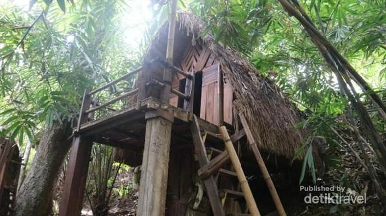 Kampung Primitif Banyuwangi