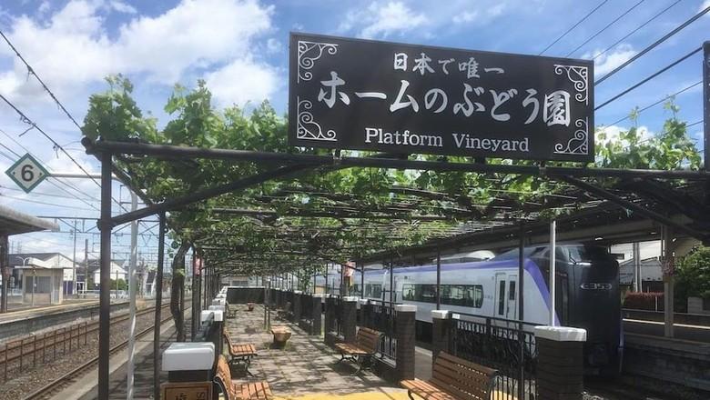 Uniknya Kebun Anggur di Stasiun Kereta Jepang