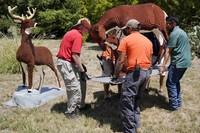 Seperti inlah para staf dengan hati-hati mengangkat replika hewan. (San Antonio Zoo)