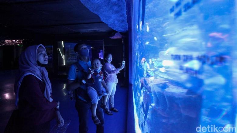 Sudah ada rencana wisata weekend ini? Aquarium indoor terbesar di Indonesia sudah dibuka lho. Yuk, intip foto-fotonya!