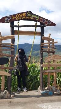 Nantinya juga destinasi ini akan disiapkan menjadi agrowisata, khususnya pada wisata petik dan kuliner olahan jagung bekerja sama dengan petani setempat. (Hasrul Nawir/detikcom)