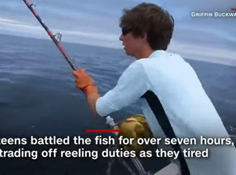 memancing ikan tuna