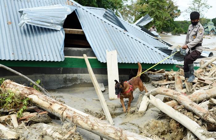 Anggota Kepolisian mencari korban dengan menggunakan anjing pelacak di Desa Bone Lama, Masamba, Kabupaten Luwu Utara, Sulawesi Selatan, Senin (20/7/2020). Tim SAR terus melakukan pencarian 18 korban yang masih hilang akibat banjir bandang di Masamba. ANTARA FOTO/Yusran Uccang/wsj.