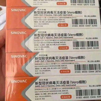 Viral Vaksin Covid 19 Sinovac China Tiba Di Ri Apa Isinya