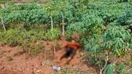 Mayat Wanita Tanpa Identitas Tergeletak di Pinggir Tol Cinere Depok