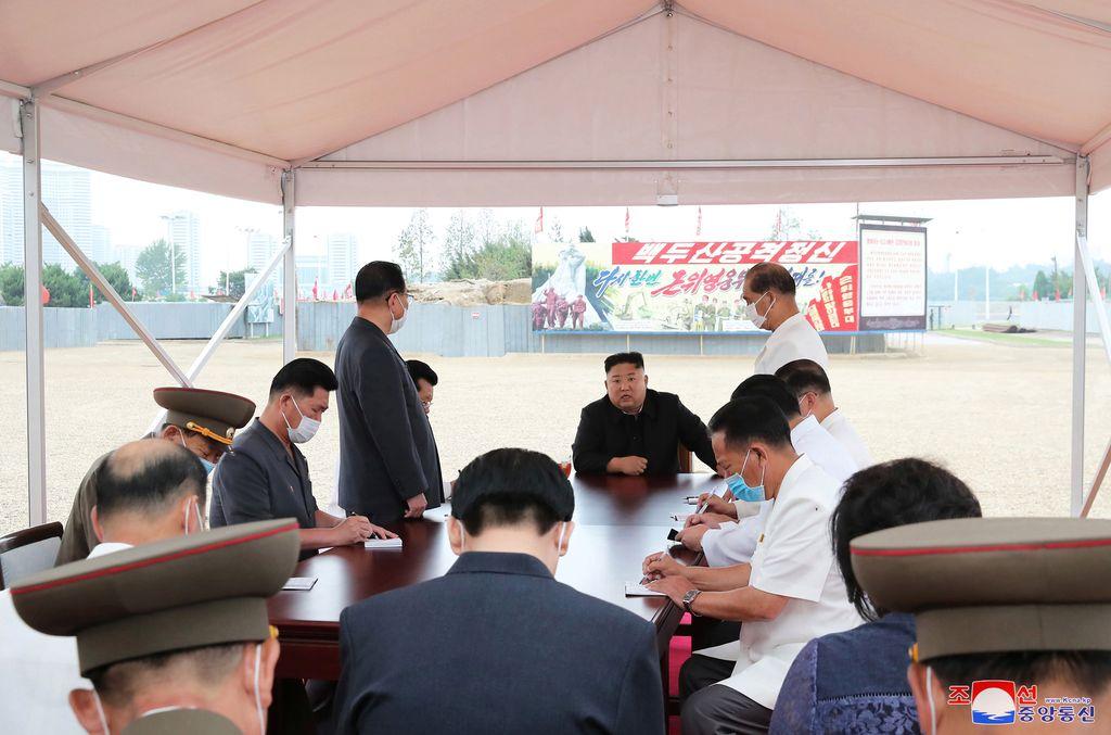 Warga Korea Utara Disarankan Makan Penyu