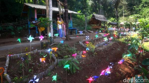 Lahan hutan yang berada tepat wilayah Kampung Pangaroan ini diberi nama Lahan Hutan (Lahuta) Mulung Layung yang artinya jika sore hari matahari terbenam akan terlihat jelas dari tempat ini (Muhamad Rizal/detikcom)
