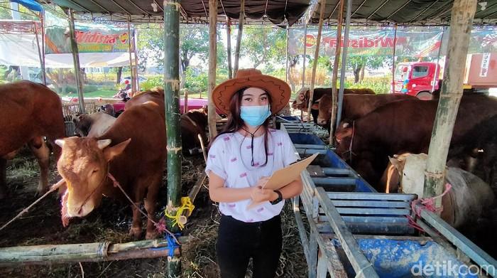 Penjual hewan kurban di Surabaya ini dilayani oleh gadis-gadis cantik yang berpakaian ala koboi lho.