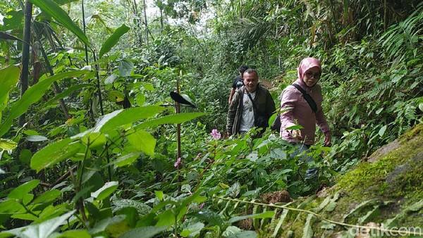 Air terjun yang baru ditemukan ini cocok untuk para petualang. Karena, untuk sampai ke lokasi air terjun harus melintasi hutan kaki Gunung Sawal dengan berjalan kaki dan sedikit mendaki sekitar 1 kilometer.