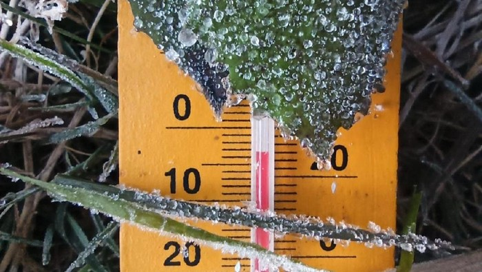 Fenomena embun es di Dataran Tinggi Dieng kembali terjadi, Minggu (26/7/2020). Suhu pagi ini mendekati minus 3,5 derajat celsius.