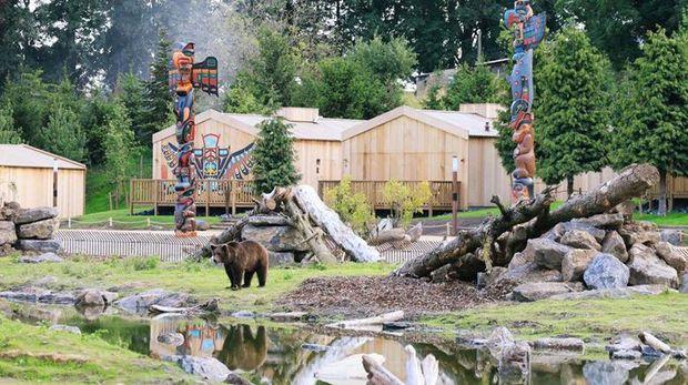 Hotel di tengah kebun binatang