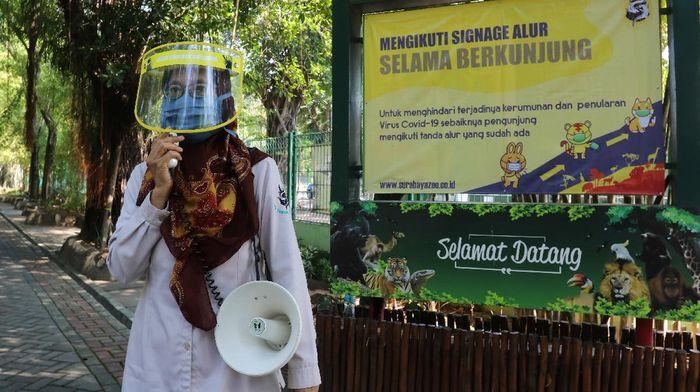 Kebun Binatang Surabaya kembali dibuka untuk umum. Kebun binatang tersebut kembali dibuka dengan menerapkan protokol kesehatan.