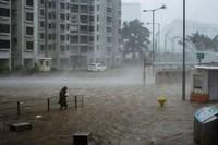 Pada 1960-an dan 70-an, topan tropis di Hong Kong menelan ratusan korban jiwa. Ribuan orang juga kehilangan rumah karena banjir, dan kota itu harus menghabiskan jutaan dolar untuk perbaikan setiap tahunnya.