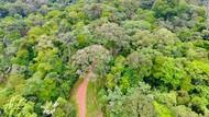 Kosta Rika Minta Turis Menyumbang untuk Lingkungan