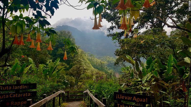 Hutan hujan tropis di Kosta Rika