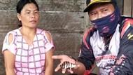 Mengenal Ikan Tiger Fish dari Muba Harganya Capai Rp 25 Juta
