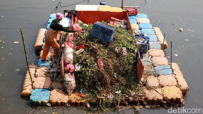 Petugas UPK Badan Air DKI Jakarta melakukan terobosan dengan membuat perahu pengangkut sampah hasil modifikasi yang mirip tongkang. Penasaran seperti apa?