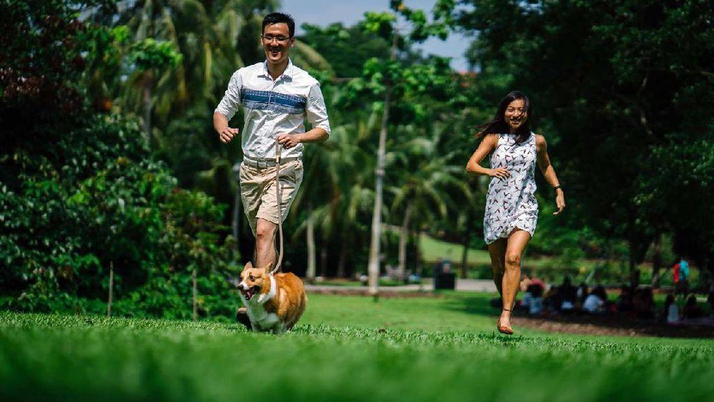 Hunian Premium Berkonsep Hijau & Sehat Segera Hadir di Indonesia