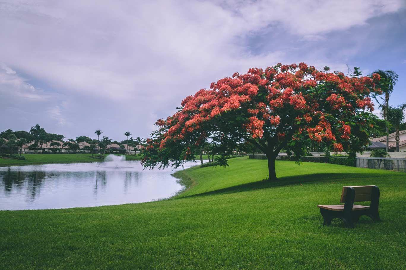Sentosa Park