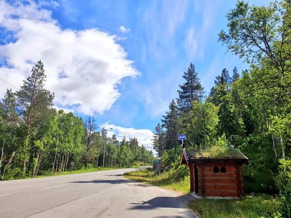 Hutan rindang di pinggir jalan juga punya halte unik seperti rumah Hobbit. (Ruswandi/Istimewa)