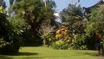 Foto: Main-main ke Museum Antonio Blanco Ubud