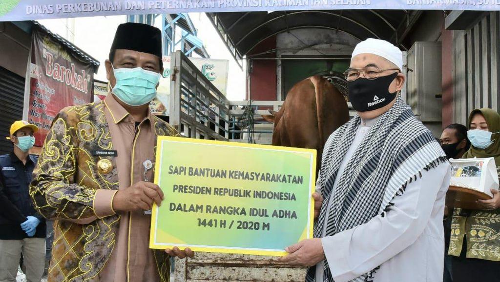 Jokowi Sumbang Sapi Kurban 879,5 Kg ke Masjid Noor Banjarmasin