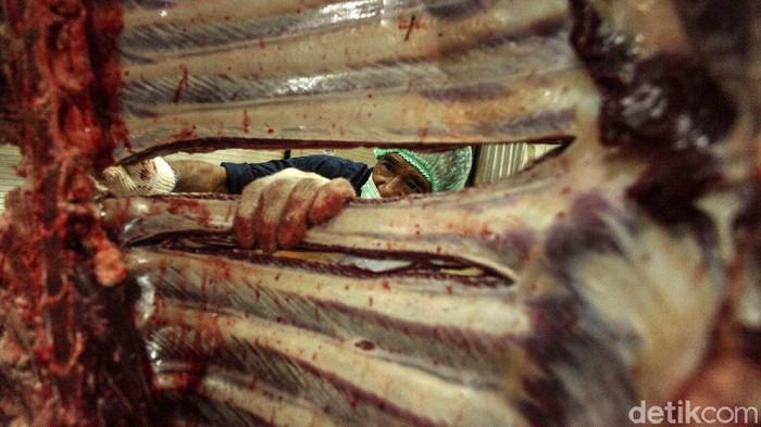 Rumah pemotongan hewan (RPH) Dharma Jaya selalu sibuk di hari raya Idul Adha. Tahun ini RPH yang terletak di Cakung itu memotong sebanyak 160 ekor sapi. Yuk lihat proses pemotongannya.