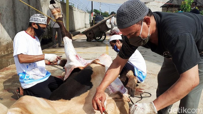 Umat Muslim melakukan pemotongan hewan kurban di Perumahan Bintara Jaya Village 2, Kota Bekasi, Jawa Barat, Jumat (31/7/2020). Hari ini umat muslim merayakan Hari Raya Idul Adha 1441 H dengan melakukan ibadah pemotongan hewan kurban. Sebanyak 4 ekor sapi dan 16 ekor kambing di potong dengan mengikuti protokol kesehatan diwilayah ini.