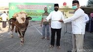 Ratusan Bungkus Daging Kurban Dibagikan ke Warga Mojokerto Door to Door