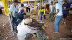 Rapid Test untuk Jagal Hewan Kurban